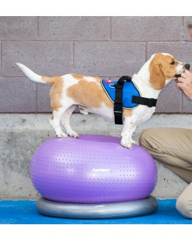 FitPAWs-Canine-Athlete-TRAX-donut