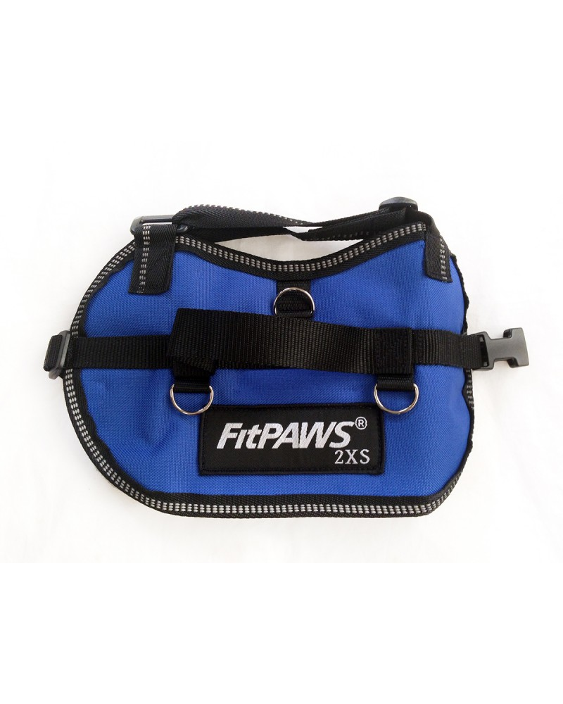 FitPAWS-harness
