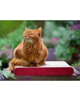 Tiragraffi per Gatto Cat-on La Planche