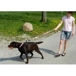 Collare Antiabbaio DOG-e-walk Basic - PatentoPet