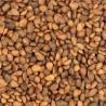 Noci Cedar Nuts Medio Calibro 500gr
