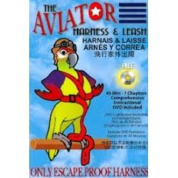 Aviator imbracatura calzata su pappagallo