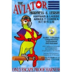 Aviator guinzaglio pappagallo contenuto
