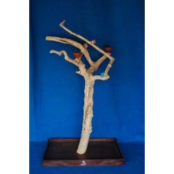 Coffee Tree Large Trespolo 6287