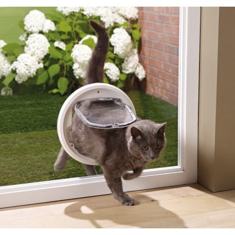 gattaiola da porta a vetro per gatti e piccoli cagnolini
