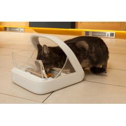 Citola ad Accesso Controllato SUREFEED Con Gatto