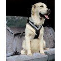 ALLSAFE MEDIUM - La Cintura di sicurezza crash-test per cani