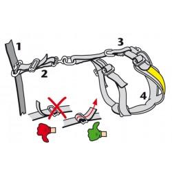 ALLSAFE MEDIUM - La Cintura di sicurezza crash-test per cani schema