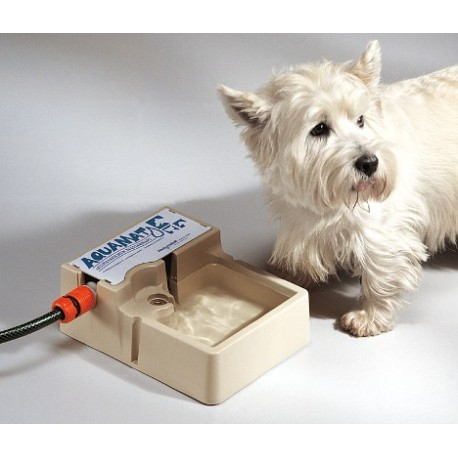 ciotola acqua per cani