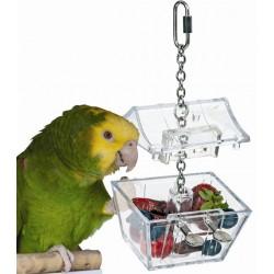 Parrot's Treasure La scatola dei Tesori per Pappagallo
