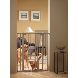 Cancelletto Con Porticina - DOG BARRIER
