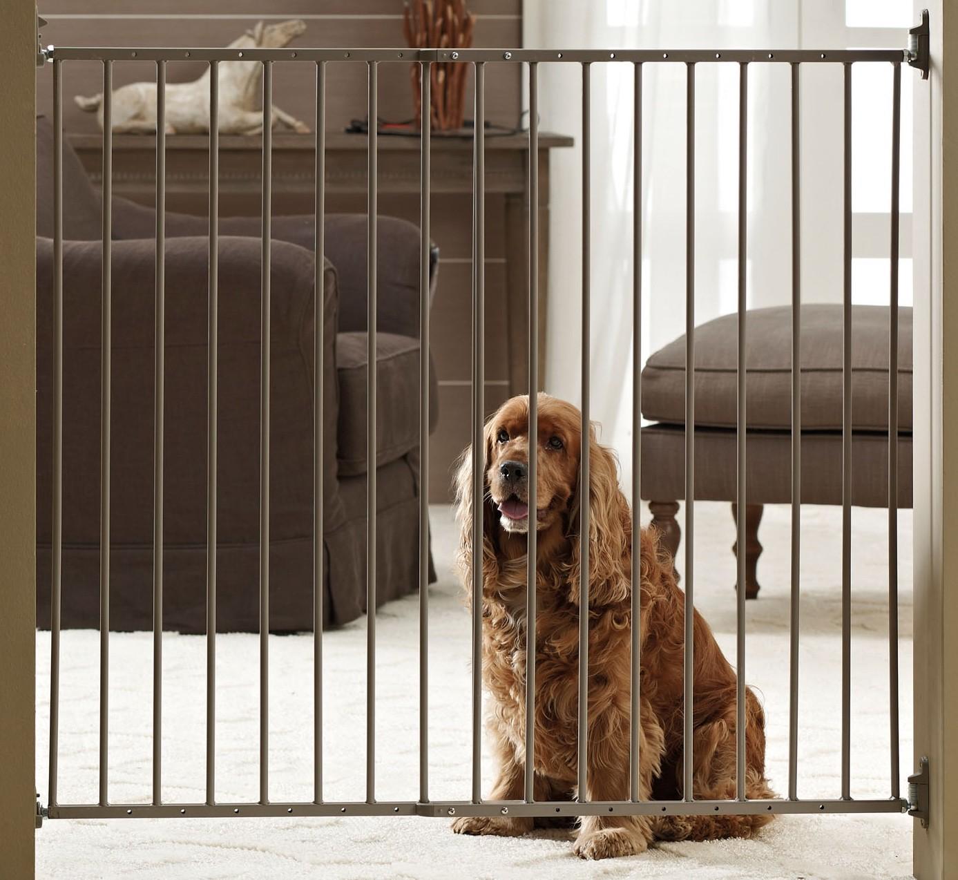 Cancelletti Per Cani Da Interno E Da Esterno