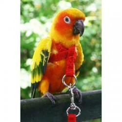 Guinzagliio Pappagallo Happy Bird PETIT