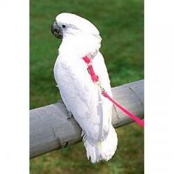 Guinzagliio Pappagallo Happy Bird MEDIUM