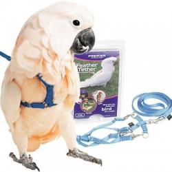 Guinzagliio Pappagallo Happy Bird LARGE