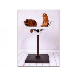 Corbeille Design - Tiragraffi XL per Gatti