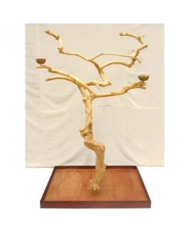 Coffee Tree AL 3043 XXXL -...