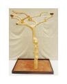 Coffee Tree AL 3045 - Trespolo Pappagallo