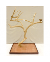 Coffee Tree AL 3036 - Trespolo Pappagallo