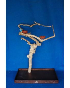 Coffee Tree Trespolo BL 6291