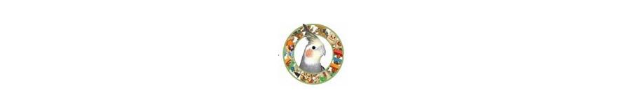 Giochi masticabili per pappagallo