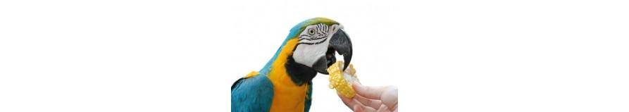 Mangimi Estrusi e pellettati per nutrire correttamente il tuo pappagallo