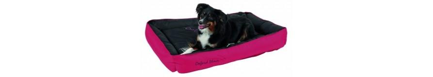 Letti per cani, coperte per cani e cuscini per cani - da Animalmania conviene di più