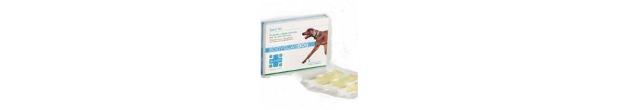 Antiparassitari per cani, antipulci e antizecche per cani