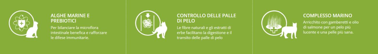 Iconografica uso Indoor Adult Lamb alimento per gatti adulti che vivono in casa