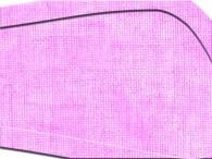 004G - Rosa