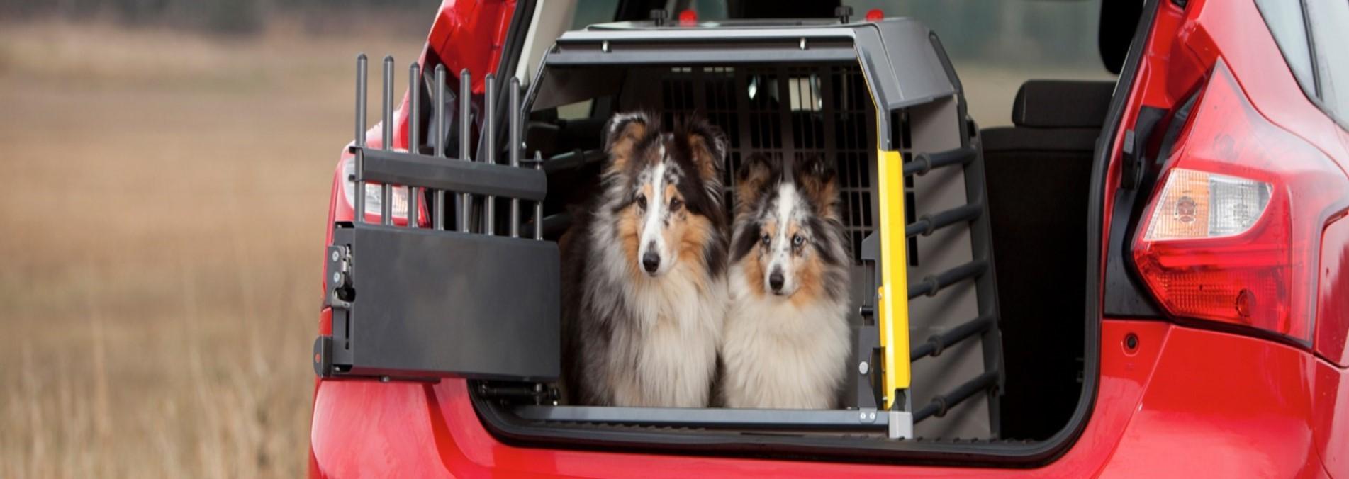 Le Gabbie Variocage  Sicure per te sicure per il tuo cane.