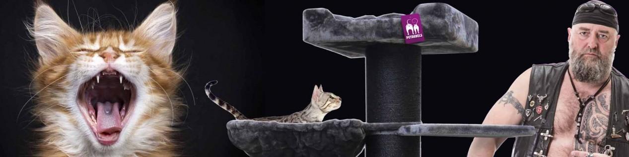sample-2I tiragraffi per gatti di gran carattere